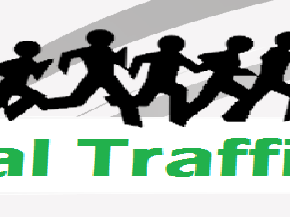 How to drive Viral traffic to your blog or website?