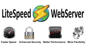 LiteSpeed Review