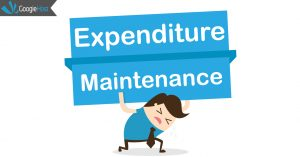 expenditure and maintenance